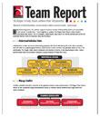 team-report